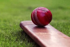 cricket-show