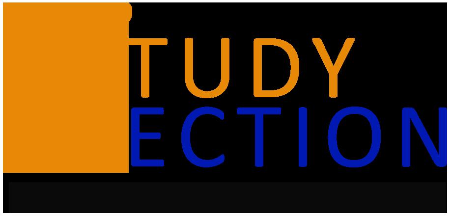 studySection-logo